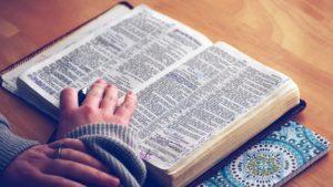 意味を辞書で調べる